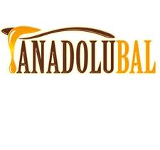 Sanpey Gıda Anadolu Bal